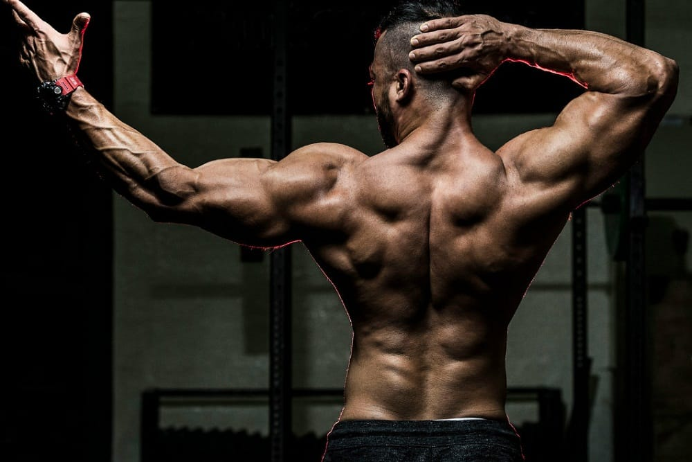 Secrets to Building Muscle Strength
